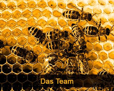 das team thumbnail