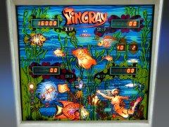 sting-ray-ansicht-03.jpg