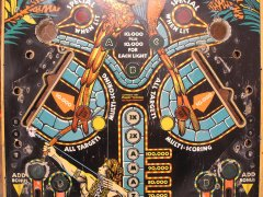 playfield-amazon-hunt02.JPG