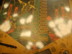 playfield-amazon-hunt37.JPG