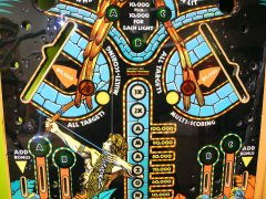 playfield-amazon-hunt78.JPG