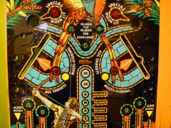 playfield-amazon-hunt79.JPG