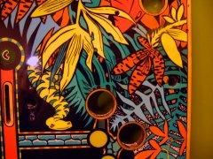 playfield-amazon-hunt83.JPG