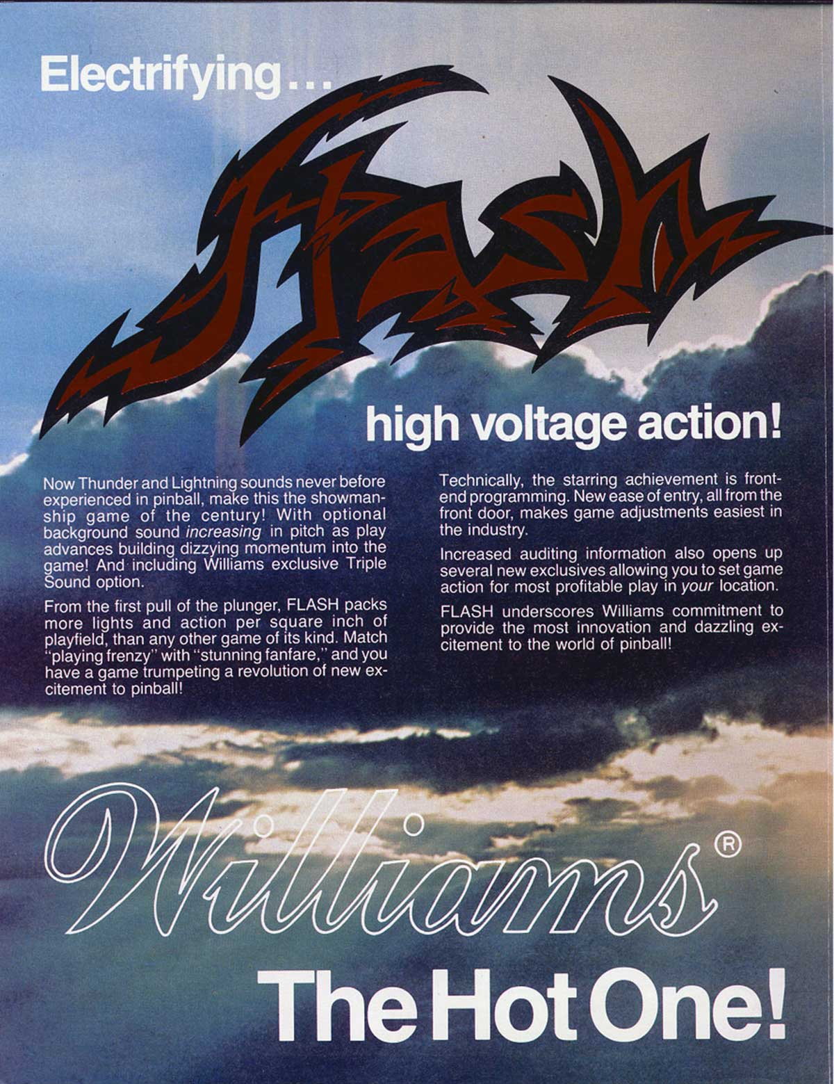 Flash_flyer2.jpg